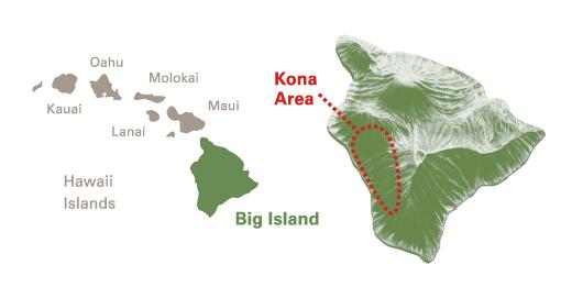 UCC Hawaii Kona coffee   UCC Hawaii on kona hawaii map, kona coffee living history farm, coffee belt map, kona coffee farm rustic, kona coffee region map, kona coast beach map, kona coffee farm hawaii, blackberry farm map, kona coffee tour map, kona waterfall map, kona big island scuba map,